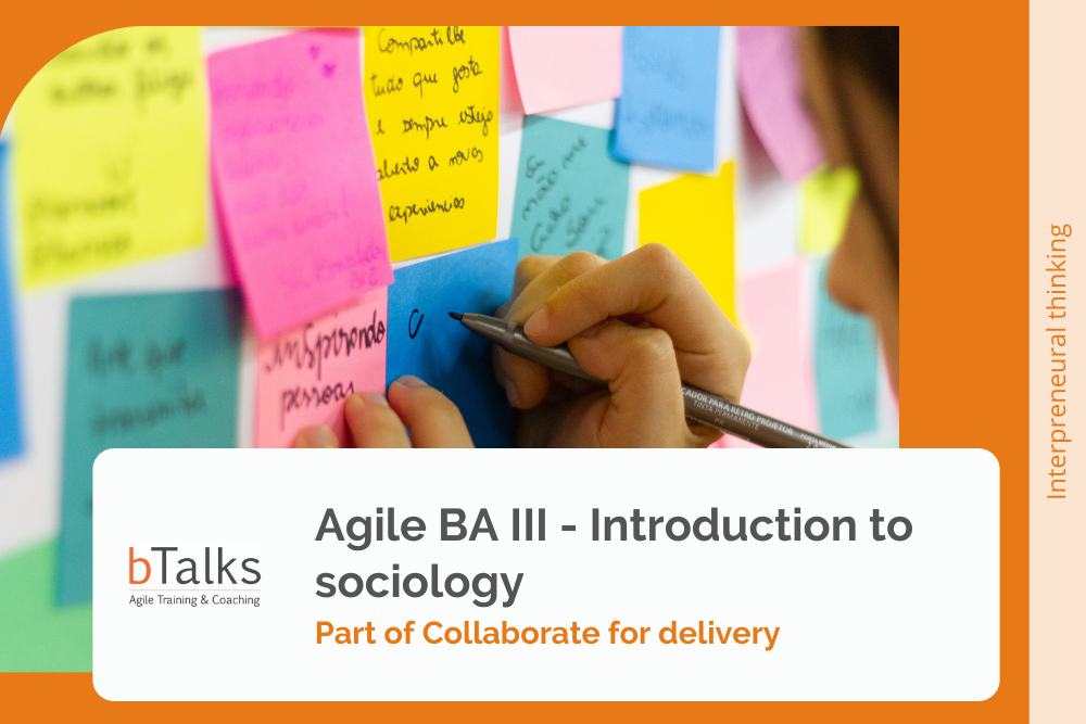Agile BA III - Introduction to sociology